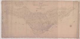 1880-1: Map of the island of Montreal / Prepared by J. Rielle, P. L. S. - 1880
