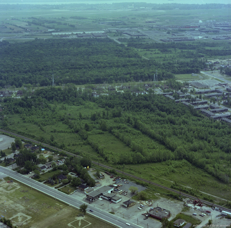 Parc-nature du Bois-de-Liesse, 7 juin 1978, VM94-B234-007