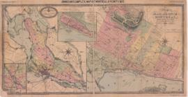 1872-1: Map of the island and city of Montreal, compiled from the latest surveys with all improve...